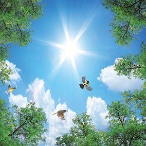 آسمان مجازی طرح درخت